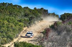 Luigi Ricci, Cristine Pfister (Ford Fiesta R5 #2, Movisport S.R.L), TROFEO RALLY TERRA