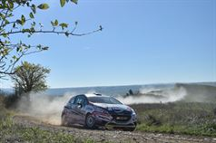 Tommaso Ciuffi, Giacomo Morganti (Peugeot 208 R R2B #56, A.S.D. Jolly Racing Team), TROFEO RALLY TERRA